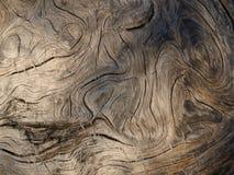 Textuur van oud hout Royalty-vrije Stock Fotografie