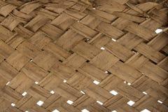 Textuur van palmbladen Royalty-vrije Stock Afbeelding