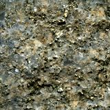 Textuur van pyrietkristal in kwarts Royalty-vrije Stock Foto
