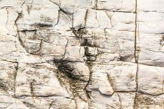 Textuur van rots Stock Fotografie