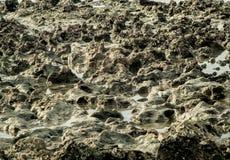 Textuur van rots op zee strand Stock Afbeelding