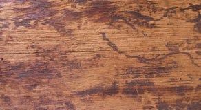 Textuur van schors houten gebruik als natuurlijke achtergrond Stock Afbeeldingen