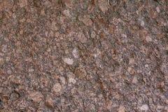 Textuur van steen voor ontwerp Stock Fotografie