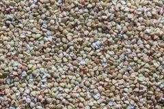 Textuur van velen zaden groen boekweit, achtergrond stock fotografie