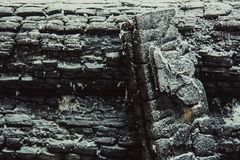 Textuur van verkoold hout stock afbeeldingen