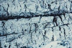 Textuur van verkoold hout royalty-vrije stock foto