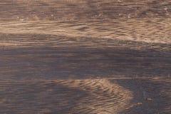 Textuur van verkoold hout royalty-vrije stock foto's
