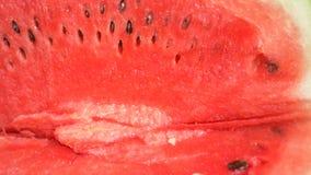 Textuur van verse rijpe watermeloen Macro dichte omhooggaande, hoogste mening 4k stock footage