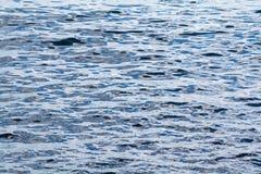 Textuur van water Royalty-vrije Stock Foto's