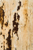 Textuur van witte muur met roest en corrosie Stock Foto's