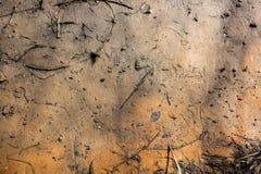 Textuur vuil zand Stock Foto's
