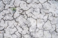 Textuur zoute gronden Stock Afbeelding