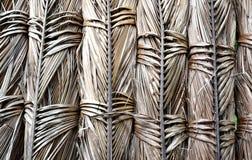 Textuurachtergrond van droge kokosnotenbladeren Royalty-vrije Stock Afbeeldingen