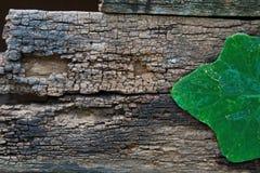 Textuurhout Stock Afbeeldingen