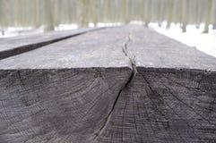 Textuurkern van een boomboomstam royalty-vrije stock foto