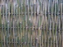 Textuuromheining van bamboe Royalty-vrije Stock Foto