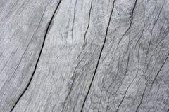 textuuroppervlakte van oud hout Stock Foto