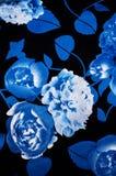 Textuurstof Royalty-vrije Stock Foto