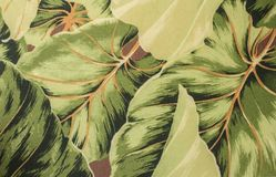 Textuurstof Stock Foto's