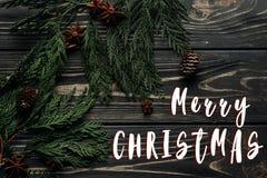 Textzeichen der frohen Weihnachten auf flacher Lage des stilvollen Winters mit Anis Lizenzfreies Stockfoto