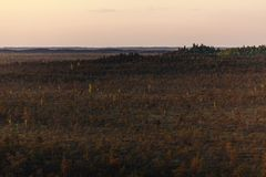 Teychi Nature Reserve. Aerial view of a beautiful swamp at sunset. stock images