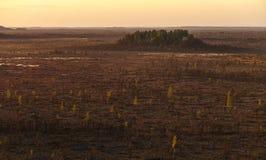 Teychi rezerwat przyrody Widok z lotu ptaka piękny bagno przy zmierzchem fotografia stock