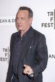 TFF 2016 Tom Hanks Royalty Free Stock Photography