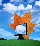 Tft monitor. New TFT monitor with autumn leaves gross the monitor Royalty Free Stock Image