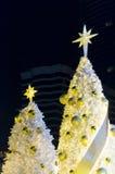 Tgrees de Noël Photo libre de droits