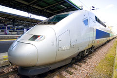 TGV. Train staying on the park