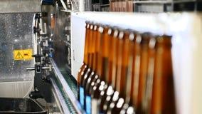 Thème de brasserie Bande de conveyeur à l'usine de bouteille - bouteilles à bière dans la production et la mise en bouteilles Lig clips vidéos