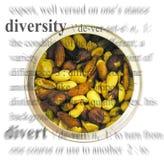 Thème de diversité Photographie stock libre de droits