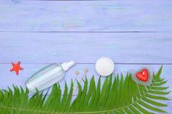 thème de station thermale de frangipani de fleur de cuvette photographie stock libre de droits