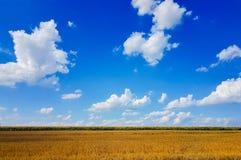Thème de Windows Photographie stock libre de droits
