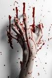 Thème ensanglanté de Halloween : la copie ensanglantée de main sur un blanc laisse le mur ensanglanté Photographie stock