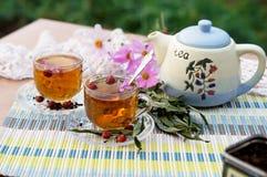 Thé à l'extérieur Photos stock