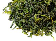 Thé amer chinois sans cafféine de Kuding Image stock