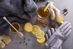 Thé avec des épices Image stock