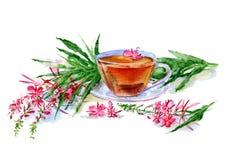 Thé avec l'mauvaise herbe du feu illustration stock