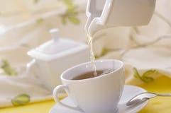 Thé avec la cuvette blanche avec du sucre Images stock
