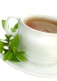 Thé avec la menthe Photographie stock