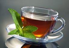 Thé avec la menthe Photos libres de droits