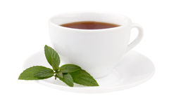 Thé avec la menthe Images libres de droits