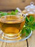 Thé avec la menthe et la théière sur le conseil en bois Image stock