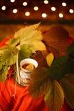thé avec le citron dans un plat de poterie de terre parmi les feuilles Photos libres de droits