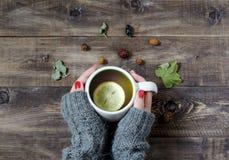 Thé avec le citron, main dans un chandail Vue supérieure Photos stock