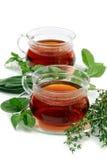 Thé avec les herbes aromatiques. Photos libres de droits