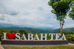 Thé blanc énorme de Sabah d'amour du lettrage I Le Bornéo, Malaisie Photographie stock libre de droits