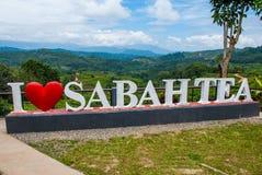 Thé blanc énorme de Sabah d'amour du lettrage I Le Bornéo, Malaisie Image stock