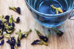 Thé bleu de fines herbes Image stock